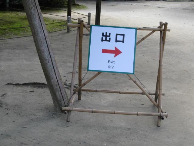 13-sakura-kyoto384.JPG