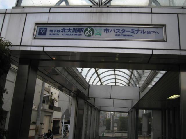 13-sakura-kyoto388.JPG