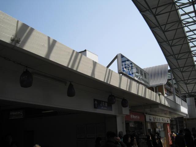 13-sakura-kyoto4.JPG