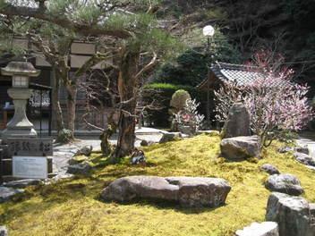 13-sakura-kyoto40.JPG