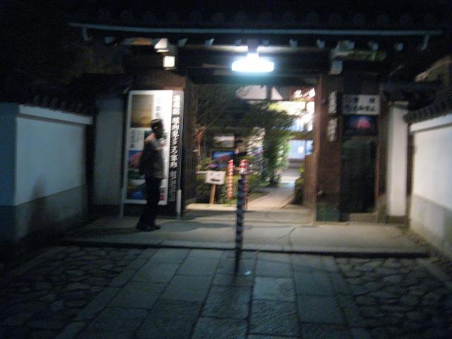 13-sakura-kyoto418.JPG