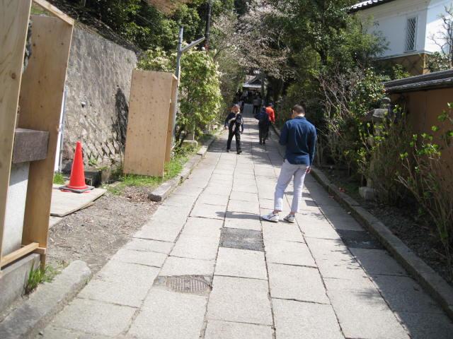 13-sakura-kyoto54.JPG