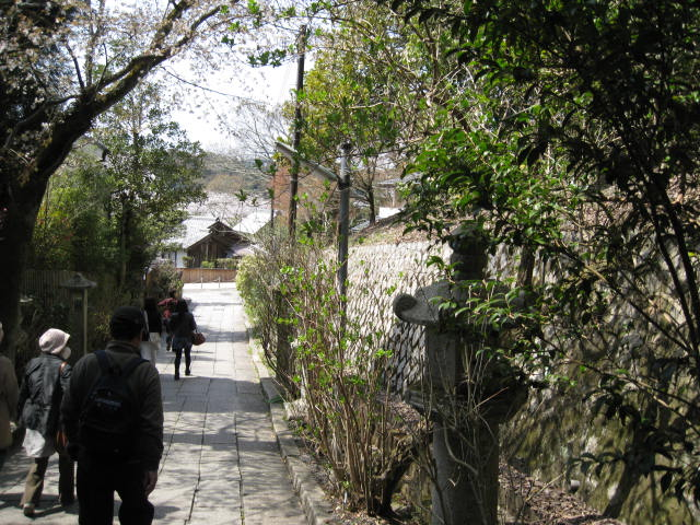 13-sakura-kyoto61.JPG