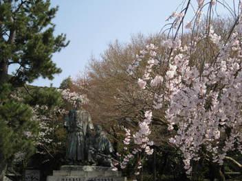 13-sakura-kyoto69.JPG