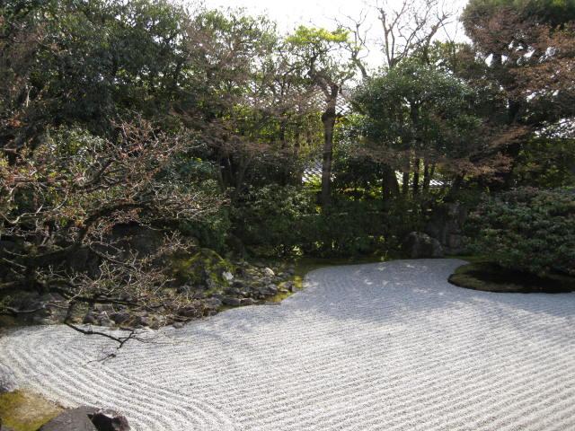 13-sakura-kyoto84.JPG
