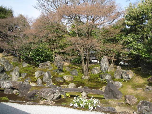 13-sakura-kyoto86.JPG