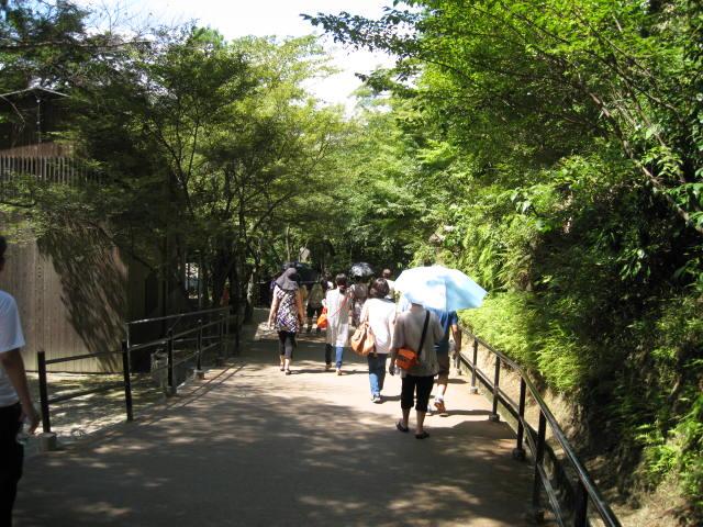 13-sum-kyoto15.JPG