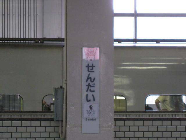 13-sum-matsusima17.JPG