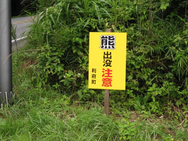 13-sum-matsusima38.JPG