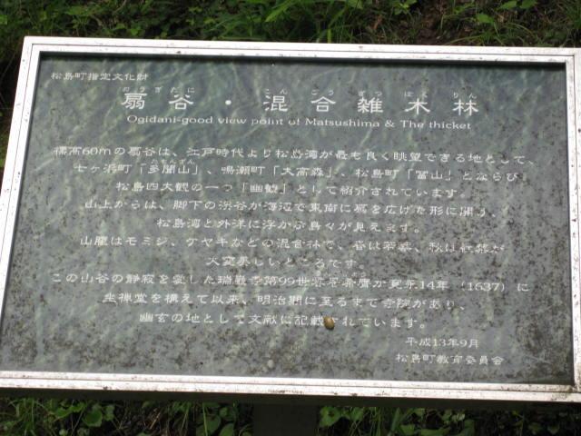 13-sum-matsusima43.JPG