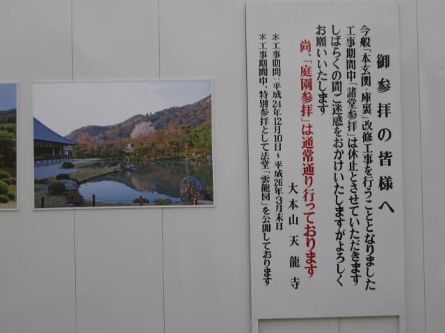 13-ume-kyoto38.JPG