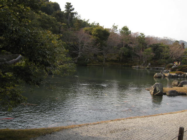 13-ume-kyoto41.JPG