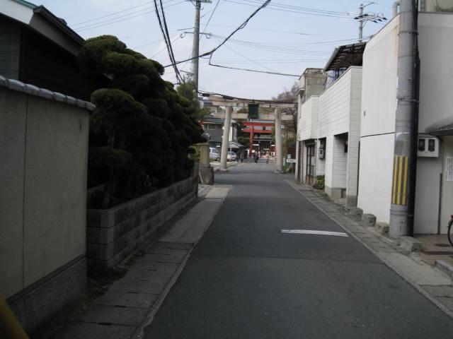 13-ume-kyoto8.JPG