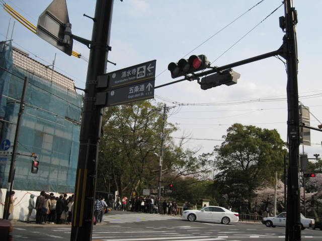 14-sakura-kyoto1.JPG