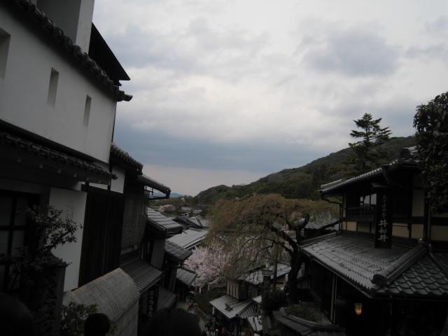 14-sakura-kyoto8.JPG