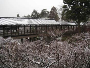 13-snow-kyoto58.JPG