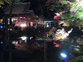 15-koyo-kyoto111.JPG