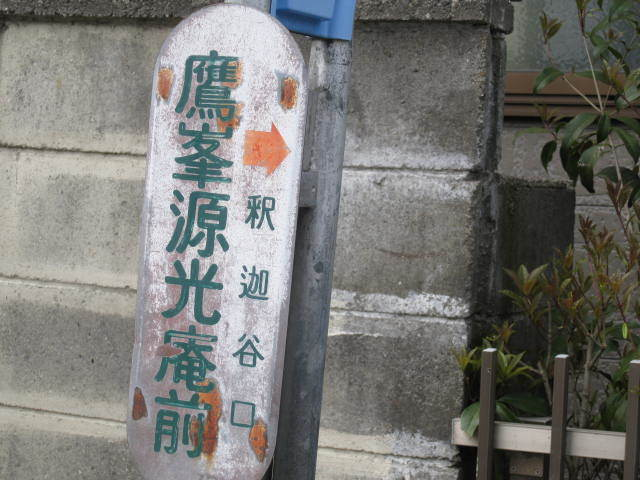 15-sakura-kyoto28.JPG