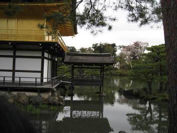 15-sakura-kyoto41.JPG