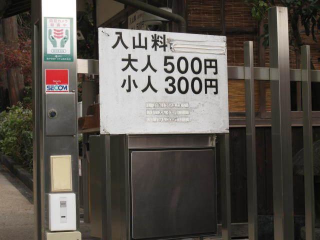 15k-koyo-kyoto106.JPG