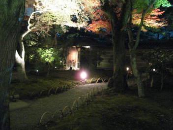 15k-koyo-kyoto126.JPG