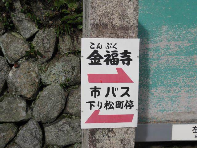 15k-koyo-kyoto33.JPG