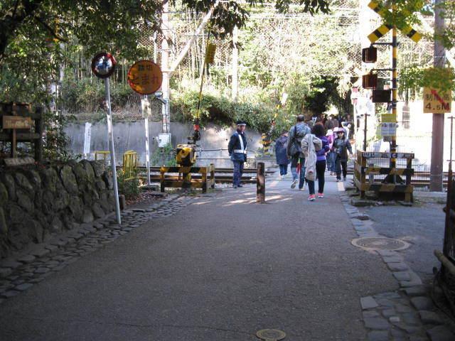 15k-koyo-kyoto74.JPG