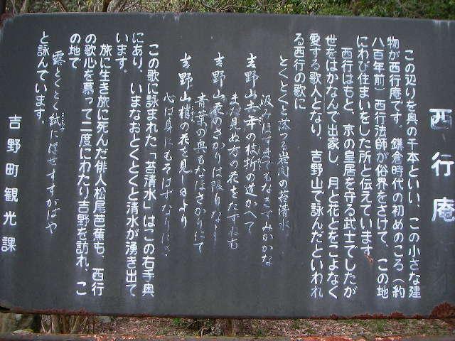 2008-yoshino-sakura17.JPG