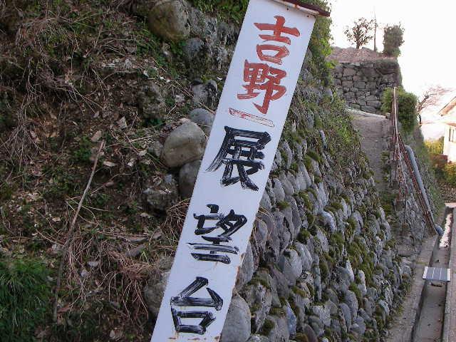 2008-yoshino-sakura31.JPG