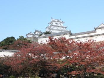 2014-koyo-himejijyo2.JPG