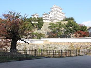 2014-koyo-himejijyo3.JPG