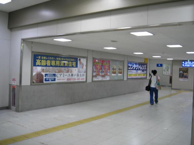 jr-shinnagata6.JPG
