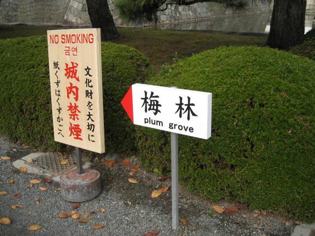 10-koyo-kyoto219.JPG