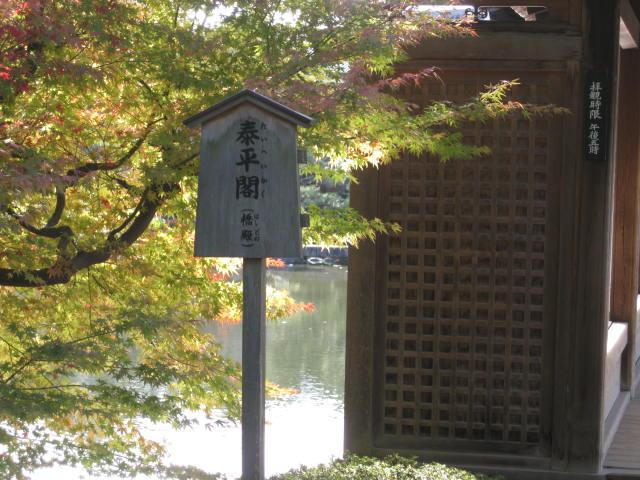 10-koyo-kyoto336.JPG