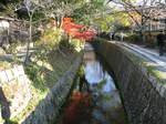 10-koyo-kyoto366.JPG