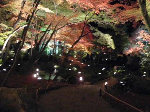 10-koyo-kyoto439.JPG