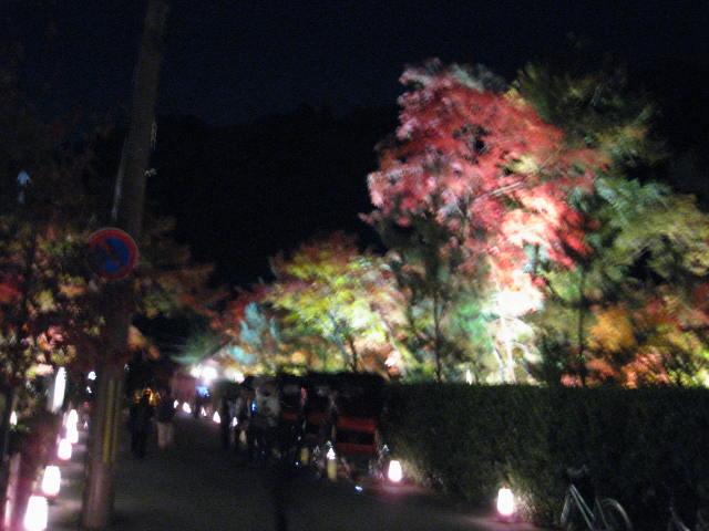 10-koyo-kyoto443.JPG