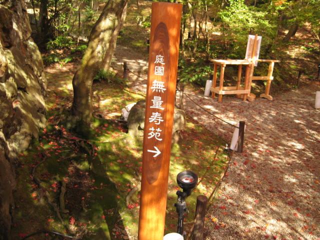 10-koyo-kyoto503.JPG