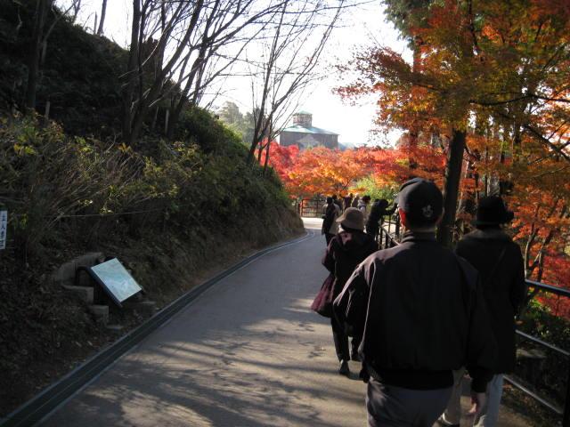 10-koyo-kyoto546.JPG