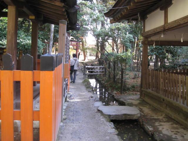 10-koyo-kyoto789.JPG