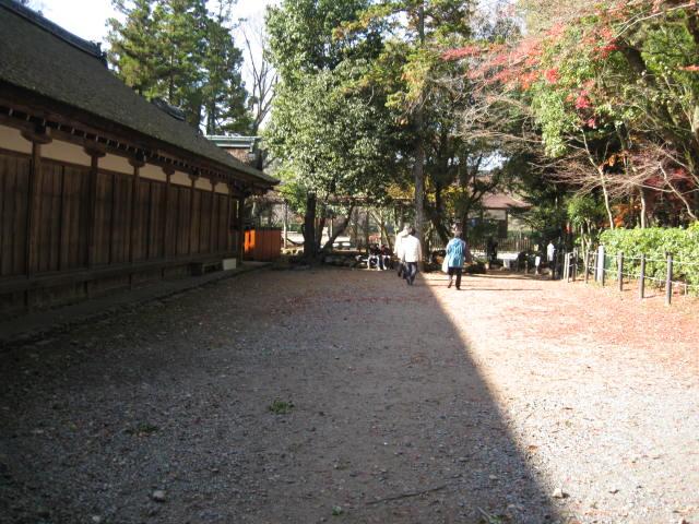 10-koyo-kyoto793.JPG