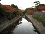 10-koyo-syukugawa24.JPG