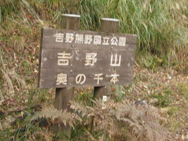 10-koyo-yoshino66.JPG