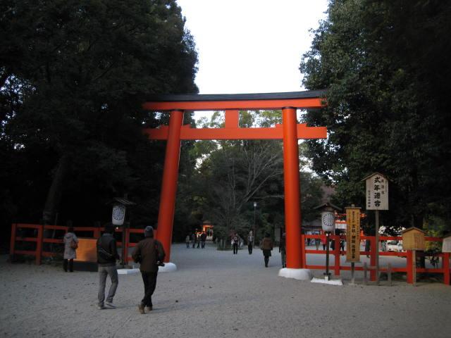 11-koyo-kyoto279.JPG