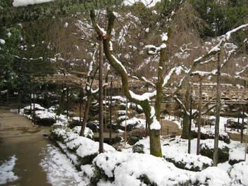 12-snow-kyoto84.JPG